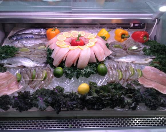PezCo Aquafarm Showcase